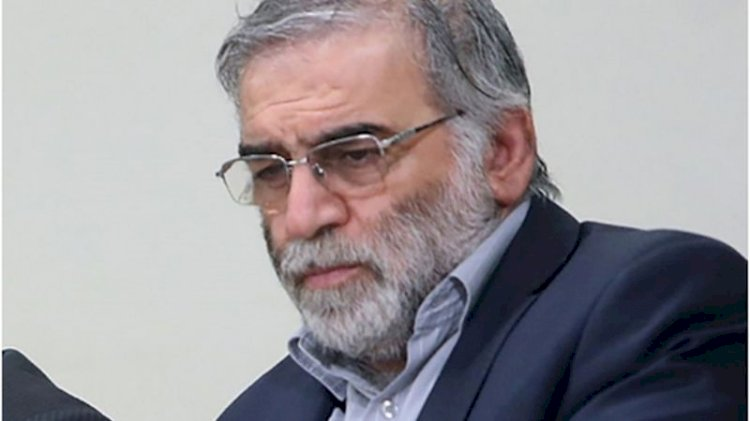 Iran vows to avenge scientist's assassination